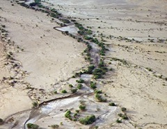 Water course in desert
