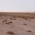 Saddam's Great Iraq – 12
