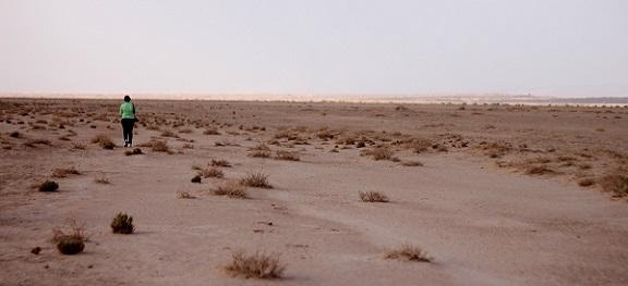 iraq-desert-002