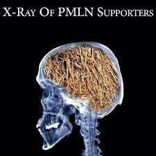 PMLN-supporters