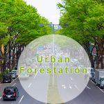 urban-forestation